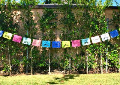 Baby Brunch Event Ideas